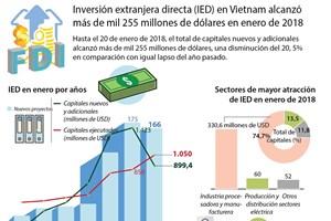 Inversión extranjera directa en Vietnam disminuye en enero