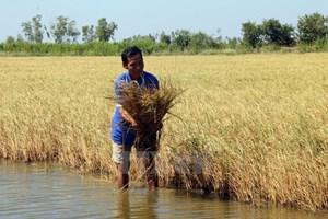 Debaten en Vietnam gestión de acuíferos costeros en Asia-Pacífico