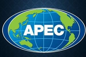 El Año APEC 2017 contribuye a elevar la posición de Vietnam en palestra mundial